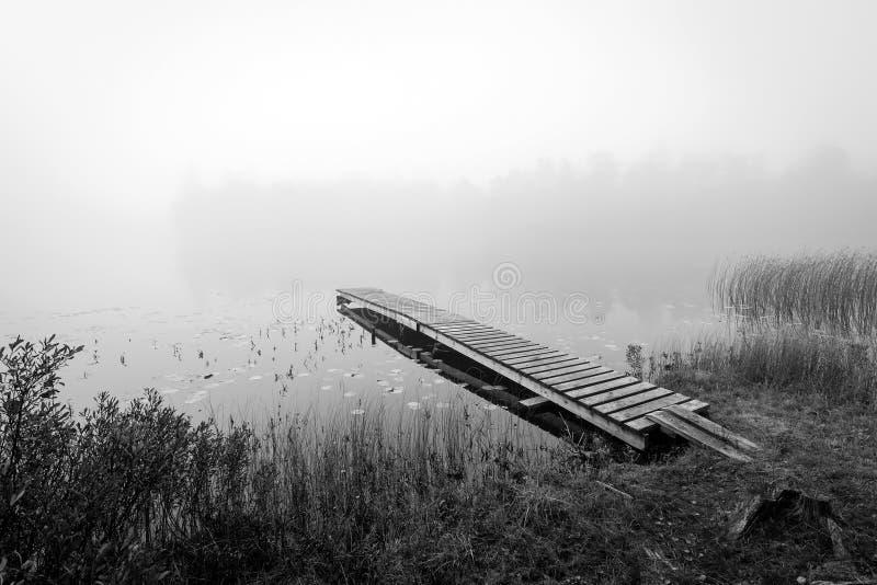 Opinião monocromática do outono para o lago sueco fotografia de stock