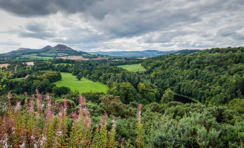 A opinião nas beiras escocesas, Escócia de Scott fotos de stock royalty free