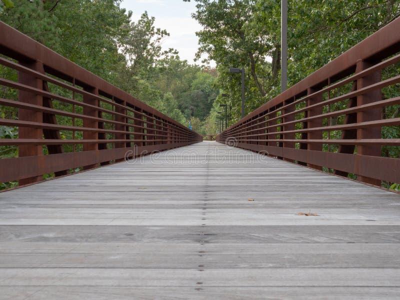 Opinião nivelada do baixo assoalho de um passeio de madeira nas madeiras imagens de stock