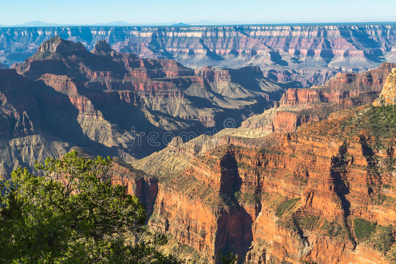 Opinião norte da borda de Grand Canyon fotografia de stock