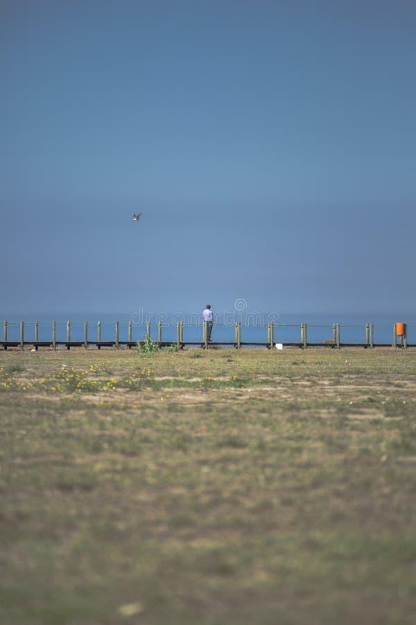 Opinião o homem que olha para fora ao mar, passagem de madeira pedestre, gaivota no céu azul como o fundo imagens de stock
