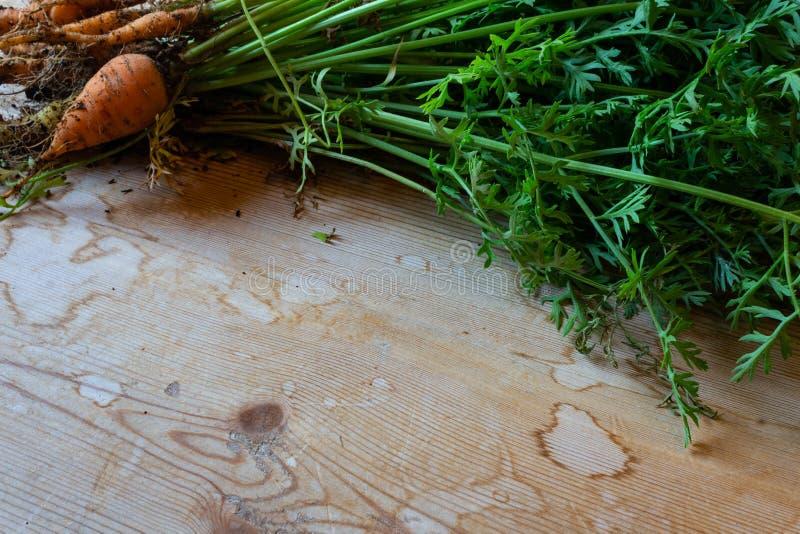 Opinião oblíqua cenouras de bebê frescas em uma tabela de madeira, espaço da cópia fotos de stock royalty free