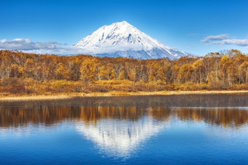 Opinião panorâmico do outono do Ko o vulcão ryaksky refletiu na água do lago Russo Extremo Oriente, Kamchatka Peninsu fotos de stock royalty free