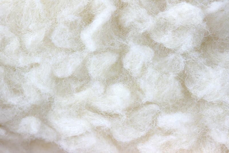 Download Detalhe Peludo Branco Da Textura Da Pele Foto de Stock - Imagem de pele, vista: 29840612