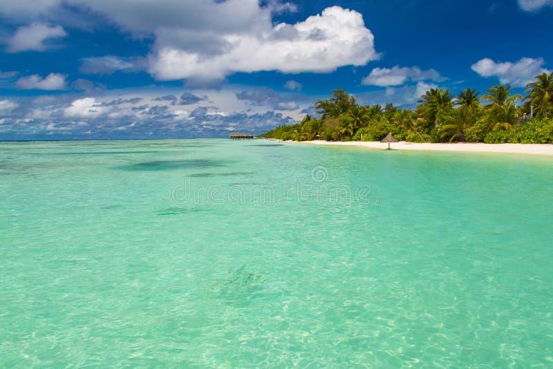 Opinião perfeita da praia Projeto das férias de verão e das férias Praia tropical inspirada, palmeiras e areia branca Cenário tra fotografia de stock royalty free