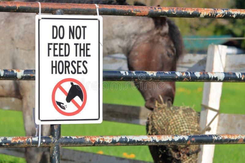 Opinião próxima o Signage e o cavalo foto de stock royalty free