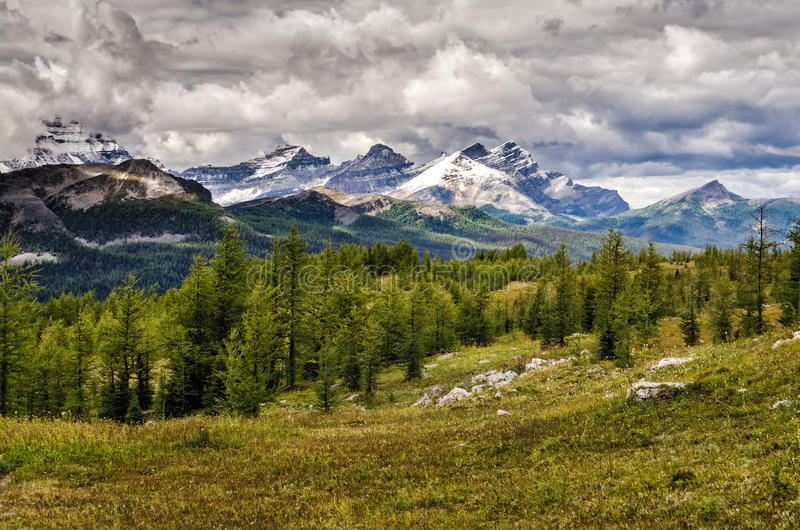 Opinião selvagem da cordilheira da paisagem, parque nacional de Banff, Canadá foto de stock