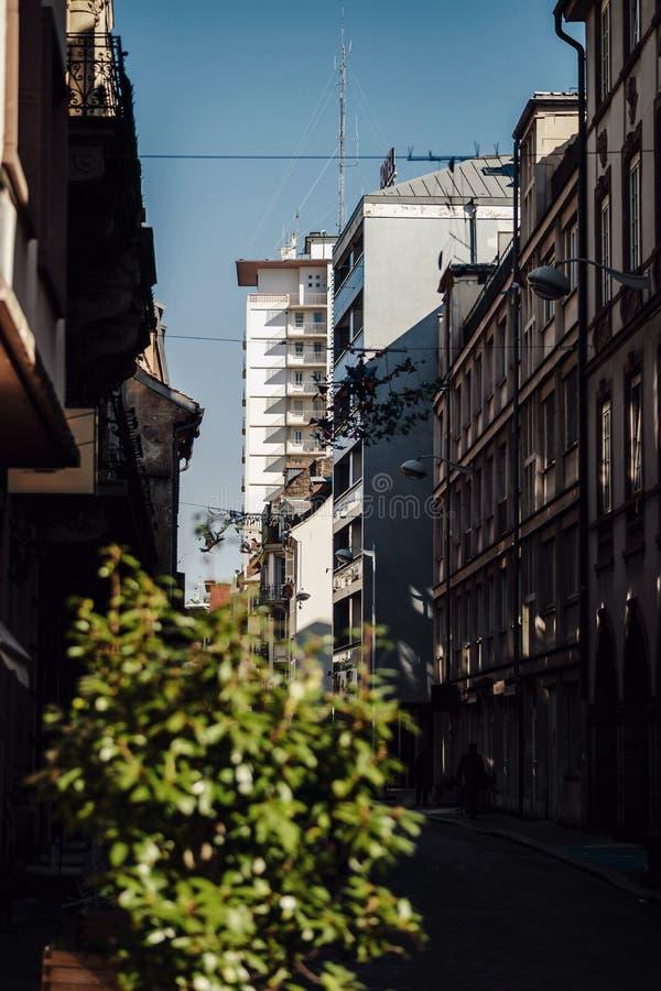 Opinião simples de Strasbourg, primeiro dia ensolarado da rua de fevereiro imagem de stock