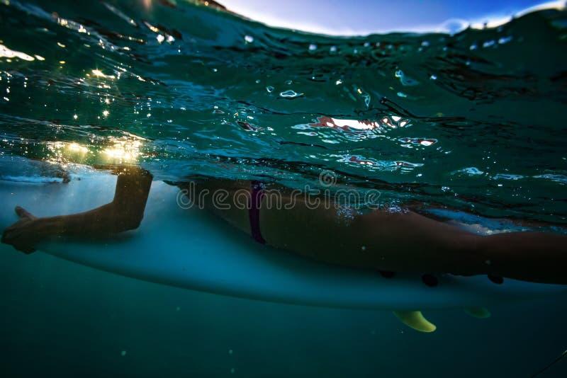 Opinião subaquática da menina do surfista a bordo fotografia de stock royalty free