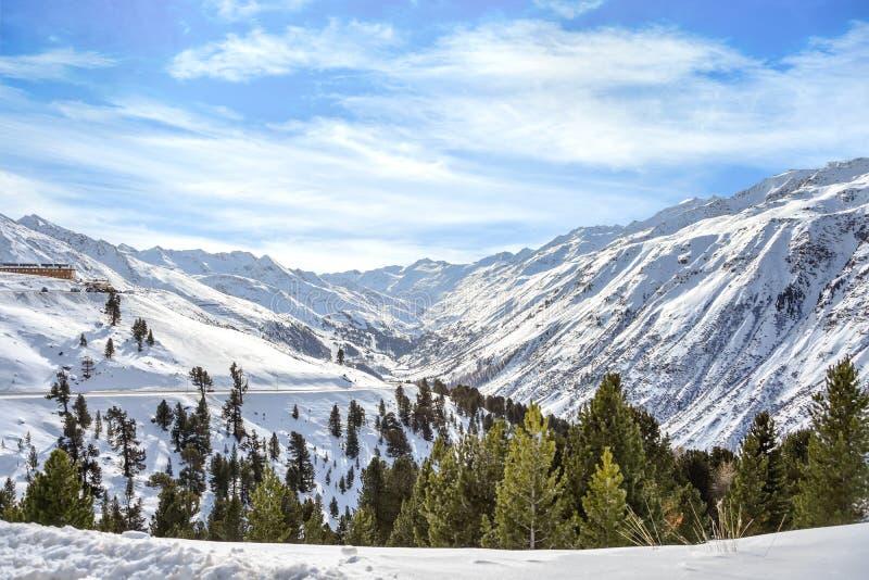 Opinião superior da neve da montanha com fundo nebuloso do pinheiro e do céu foto de stock royalty free