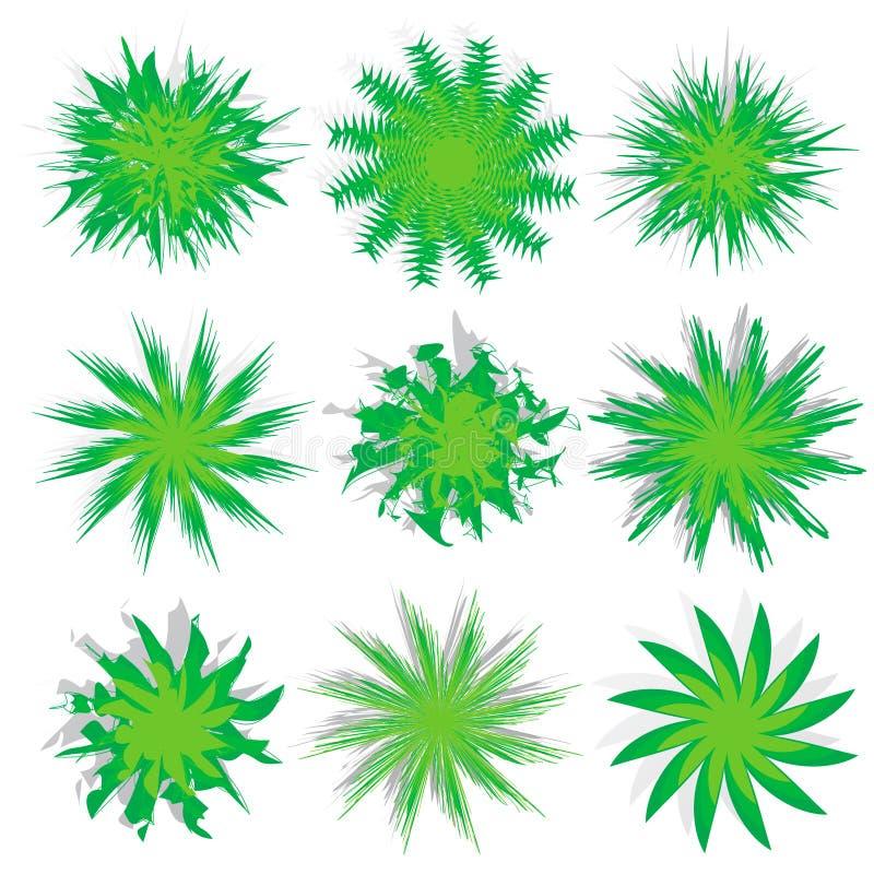 Opinião superior das árvores diferentes ilustração royalty free