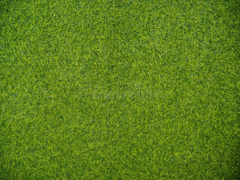 Opinião superior de grama verde fotografia de stock royalty free
