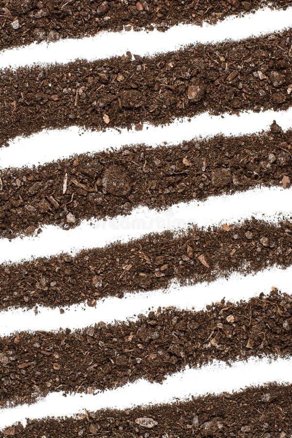 Opinião superior do fundo fértil da textura do solo do jardim fotografia de stock royalty free