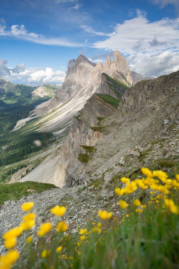 Opinião surpreendente das paisagens da montanha verde com o céu azul no verão das dolomites, Itália fotos de stock