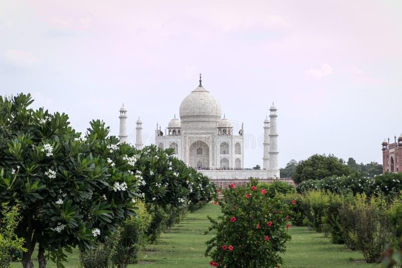 A opinião Taj Mahal de Mehtab Bagh jardina fotografia de stock