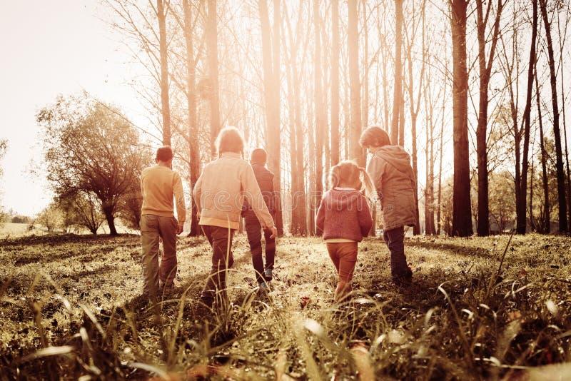 Opinião traseira as crianças que andam no parque foto de stock royalty free