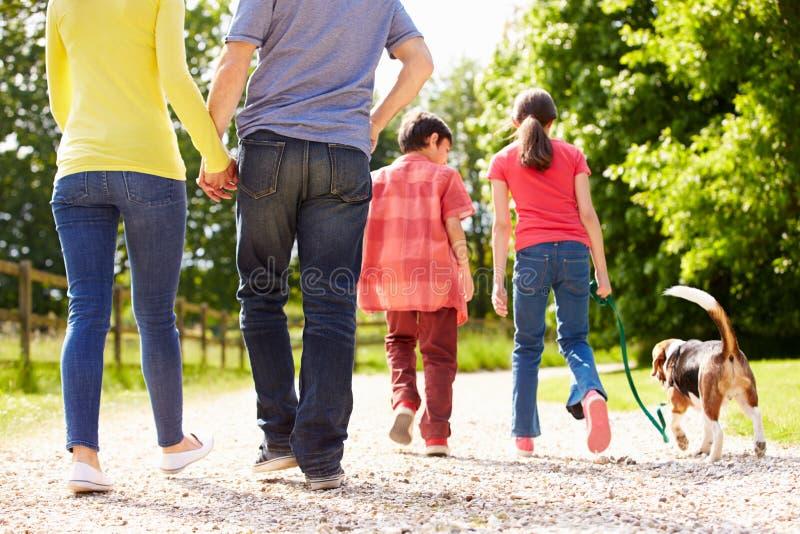 Opinião traseira a família que toma o cão para a caminhada imagens de stock royalty free