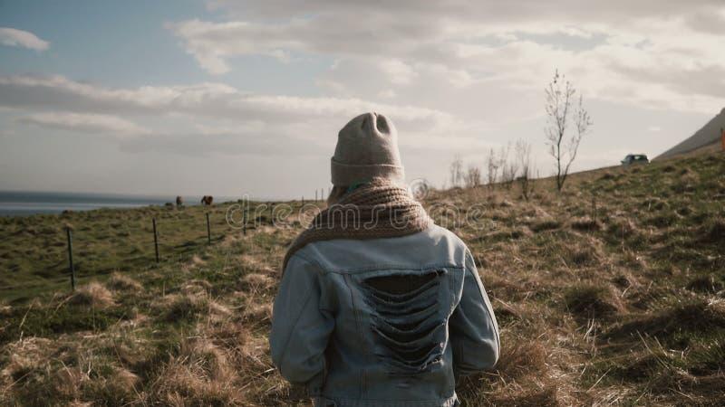 Opinião traseira a mulher à moda nova que anda através do campo perto do rio Fêmea no rancho dos cavalos em Islândia imagens de stock royalty free