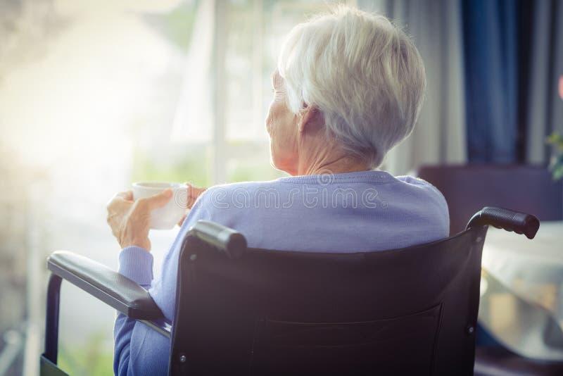 Opinião traseira a mulher superior na cadeira de rodas que guarda um copo do chá fotos de stock royalty free