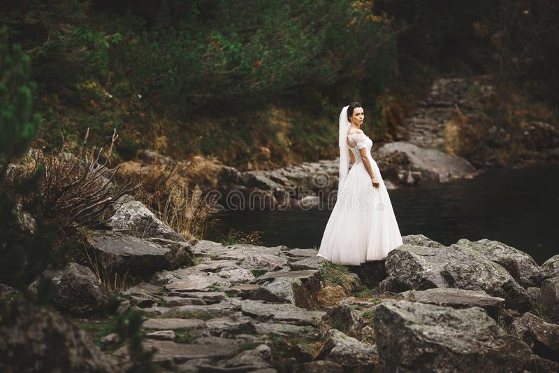 Opinião traseira a noiva na posição bonita do vestido de casamento na costa do lago com Mountain View cênico no Polônia fotografia de stock royalty free