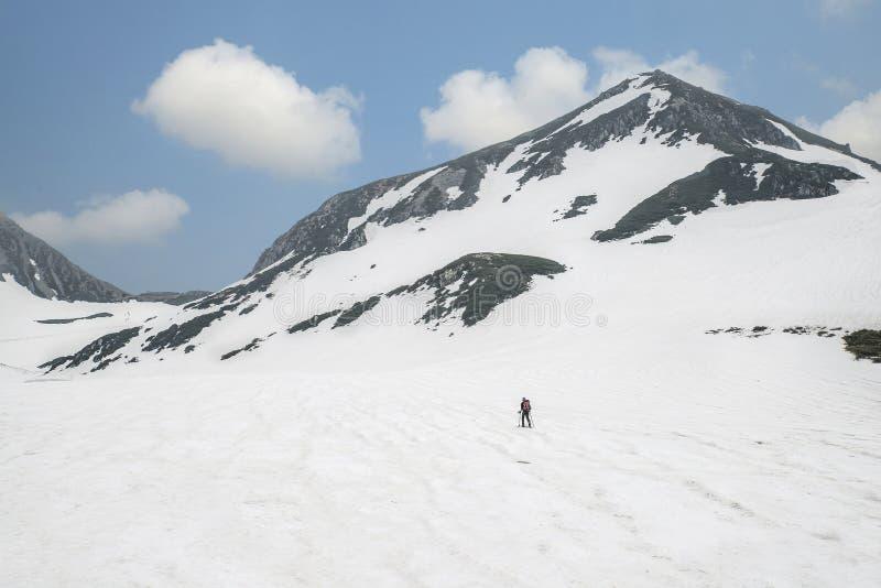 Opinião traseira o esquiador que anda através das montanhas da neve, Japão fotos de stock royalty free