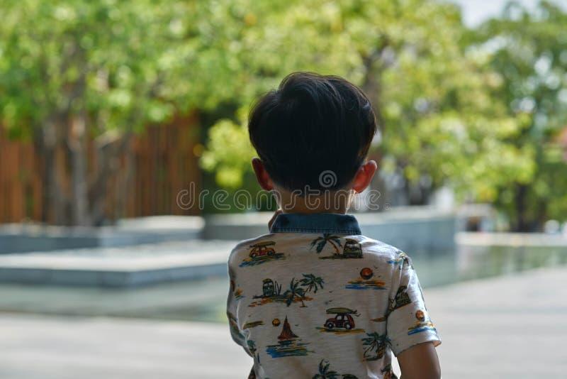 A opinião traseira o menino está olhando para fora considera a vista da decoração da lagoa imagens de stock