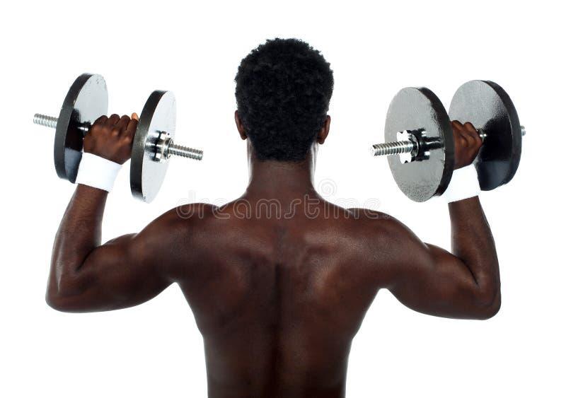 Opinião traseira um bodybuilder masculino novo fotografia de stock royalty free