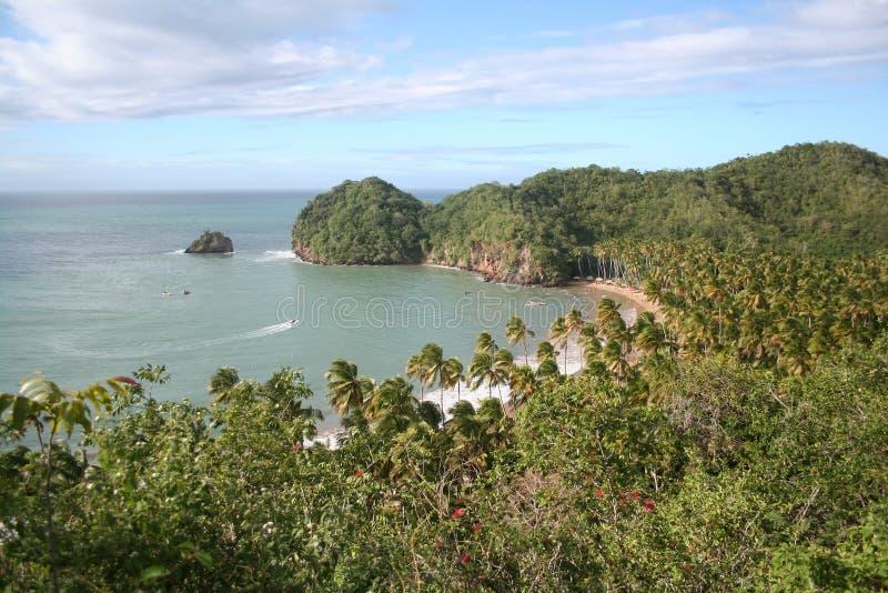 Opinião tropical da praia de acima fotos de stock