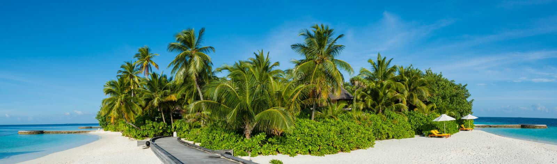 Opinião tropical do panorama da praia da ilha com as palmeiras em Maldivas imagens de stock