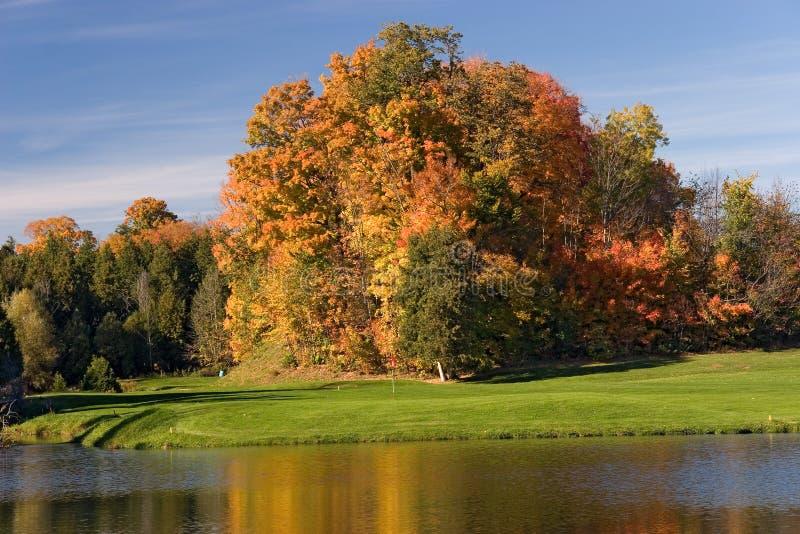 Opinión 10 del golf fotografía de archivo