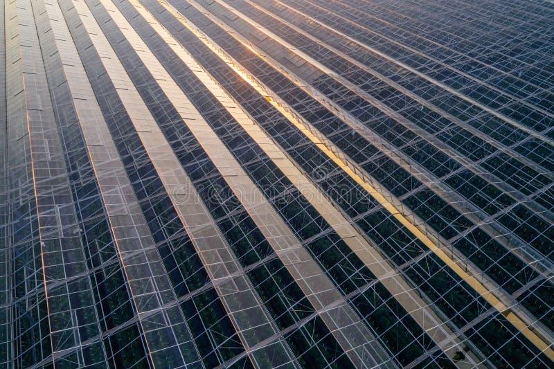 Opinión aérea del abejón sobre casas de cristal modernas grandes fotos de archivo libres de regalías