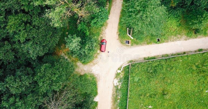 Opinión aérea del abejón viajeros perdidos en bosque fotografía de archivo libre de regalías
