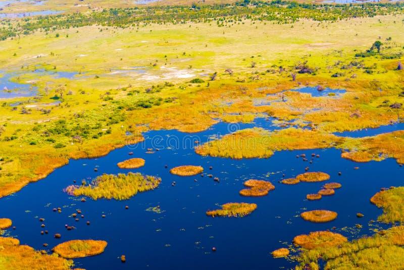 Opinión aérea del delta de Okavango foto de archivo