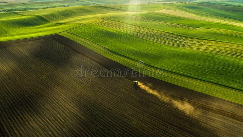Opinión aérea los campos y las cosechas de trigo en el verano con el tractor en trabajo fotografía de archivo libre de regalías