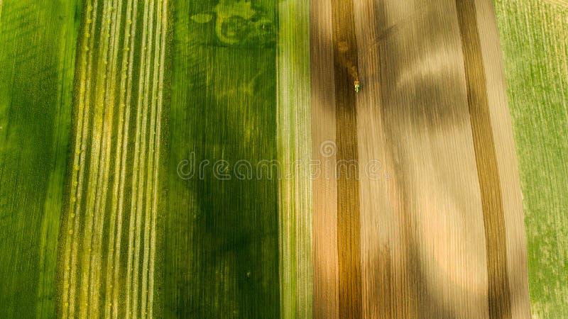 Opinión aérea los campos y las cosechas de trigo en el verano con el tractor en trabajo fotografía de archivo