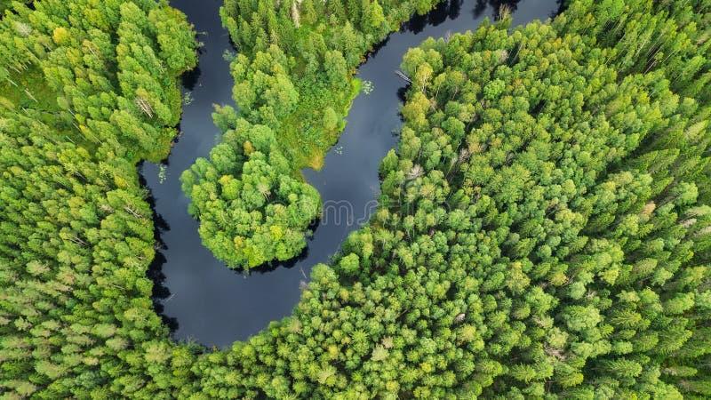 Opinión aérea sobre el bosque y el río fotos de archivo libres de regalías