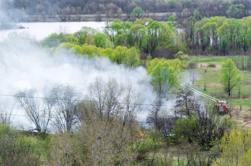 Opinión aérea sobre el camión del bombero que trabaja en el campo en el fuego foto de archivo