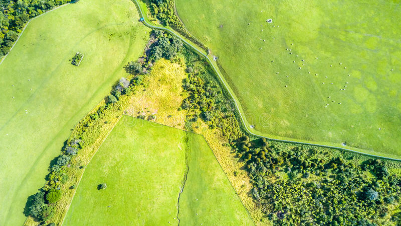 Opinión aérea sobre tierras de labrantío en el día soleado Península de Whangaparoa, Auckland, Nueva Zelanda imagenes de archivo