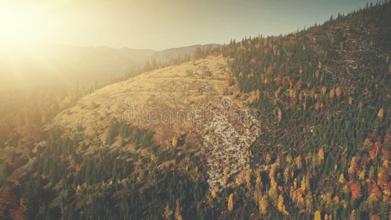 Opinión aérea suave de haz del sol de la tala de árboles de la montaña fotos de archivo