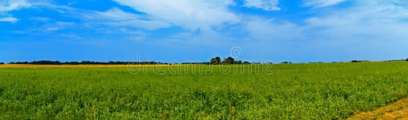Opinión amplia del campo panorámico con los árboles detrás Verano rural foto de archivo libre de regalías