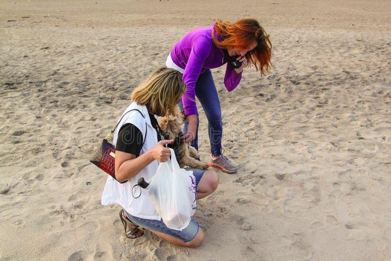 Opinión ascendente cercana la hembra dos en la playa de la arena que acaricia poco perro Concepto de la gente y de los perros Fon foto de archivo