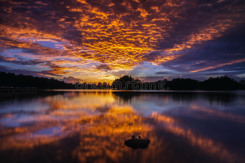 Opinión asombrosa de la puesta del sol con el cielo dramático en el parque del lago wetland imagenes de archivo