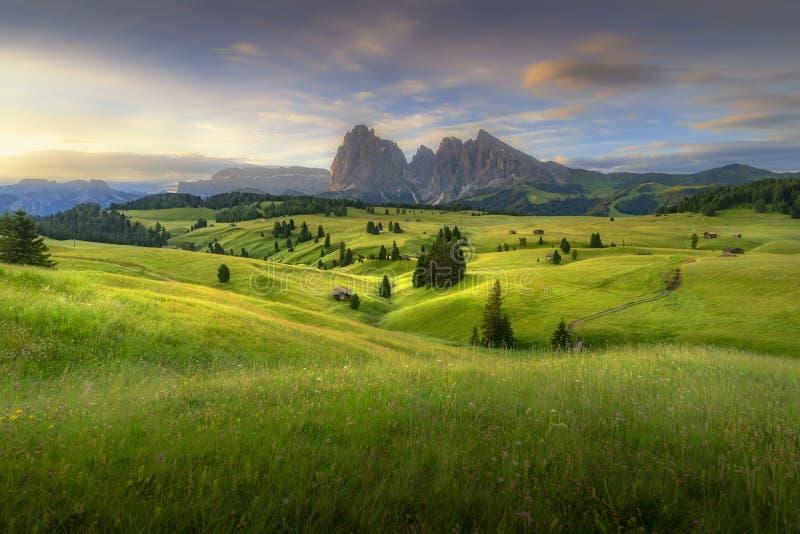 Opinión asombrosa de los paisajes de colinas verdes con el cielo azul del verano en la salida del sol de las dolomías de Seiser A foto de archivo libre de regalías