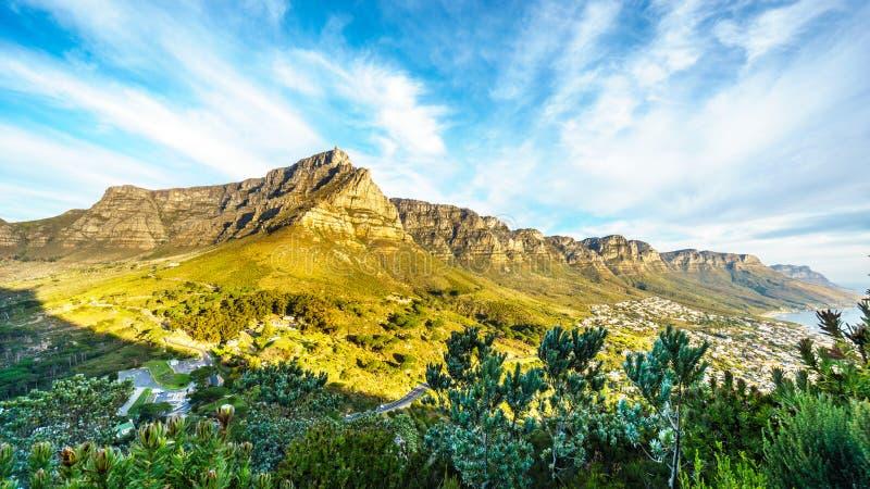 Opinión Cape Town, la montaña de la tabla y los doce apóstoles foto de archivo libre de regalías