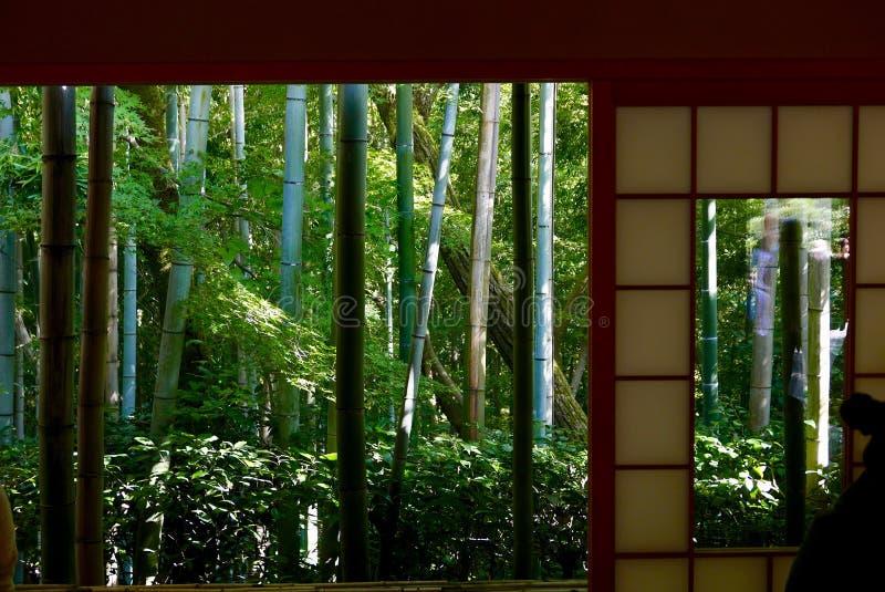 Opinión de bambú del bosque de la casa de té imagen de archivo