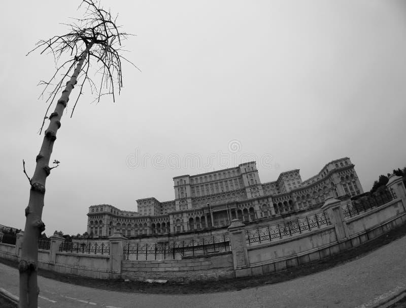 Opinión de Bucarest - palacio del parlamento (blanco y negro) fotografía de archivo