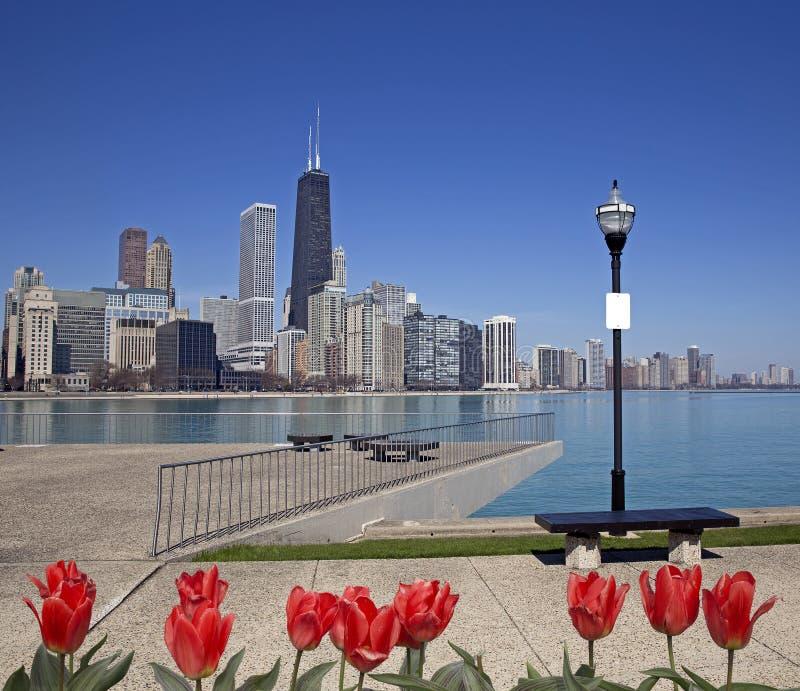 Opinión de Chicago fotografía de archivo