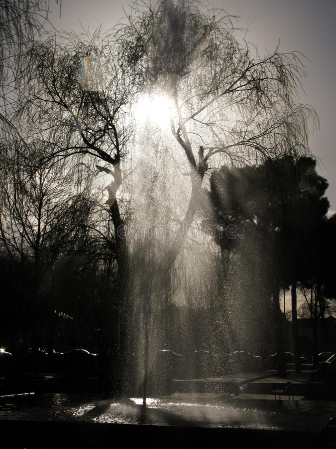 Opinión de Contre-jour a la fuente y al árbol cerca de inesfahan cuadrado de Ayatollah Khomeini, Irán fotos de archivo