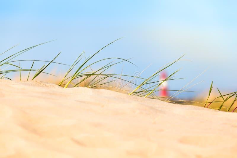 Opinión de duna de arena fotografía de archivo libre de regalías