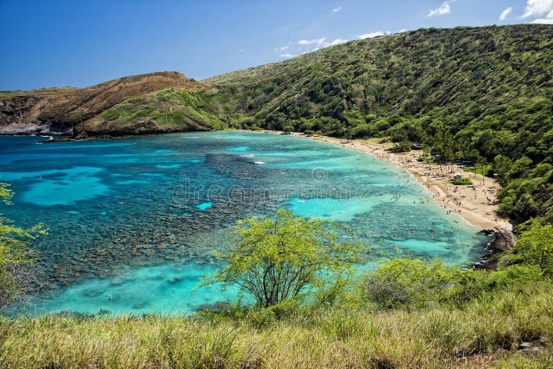 Opinión de la bahía del hanauma de Hawaii Oahu foto de archivo libre de regalías